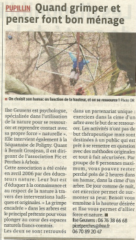 article arbre grimpe